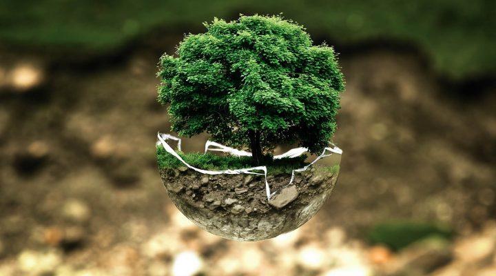 Március 6. – Nemzetközi Energiatakarékossági Világnap