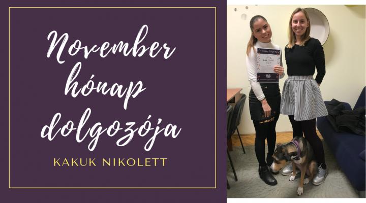 November hónap dolgozója: Kakuk Nikolett